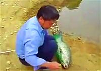 《水库钓鱼视频》 钓鱼妙手钓获40斤大青
