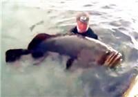 《路亚视频》 外国男子海边钓获巨物