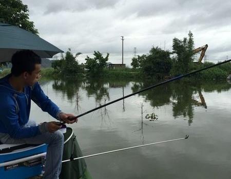 连续雨天+台风天收获惨淡!(中元节夜钓) 钓鱼之家饵料钓鲮鱼
