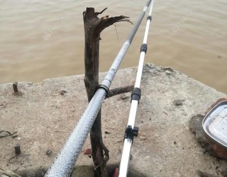 不要因为台风而耽误钓鱼 老鬼饵料钓罗非鱼
