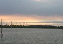 东湖野生鱼垂钓中心