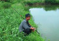 秋季談水魚的生活習性與釣法