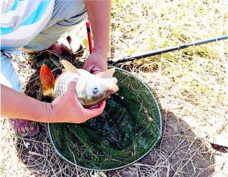 涨水出钓小浪底景区归来 钓鱼之家饵料钓黄颡鱼