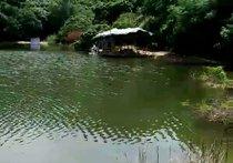 漂塘钓鱼场