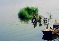 秋季江河钓鱼不能忽视的技巧(下)