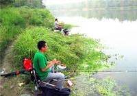 秋季江河垂钓鲤鱼选时与用饵