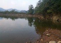 水口桥鱼塘