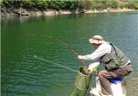水库钓鱼时避免脱钩跑鱼的方法(下)