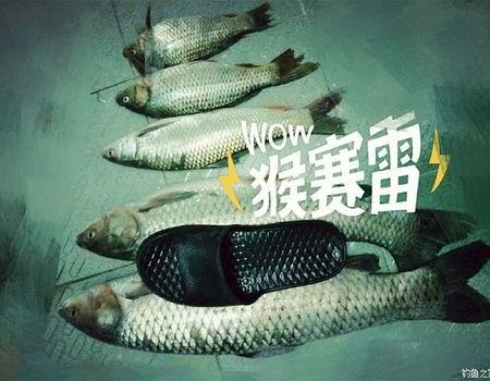 单支海杆狂怼香蜜湖草鱼 自制饵料钓草鱼
