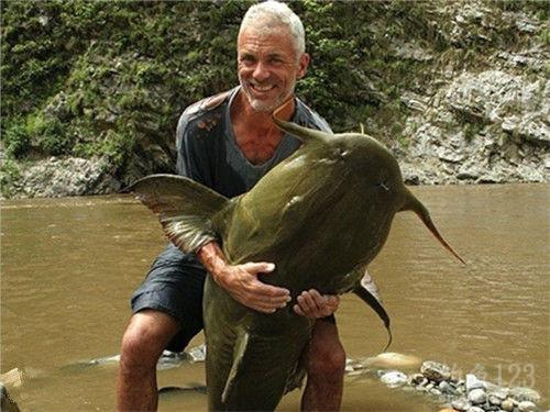 巨型食人鱼图片_韦德带您领略全球神秘河流中的巨怪(上)_钓鱼人必看