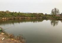 水井垂钓园
