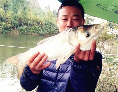 雨天水库钓鱼日记 自制饵料钓鳊鱼