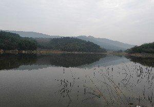 梨树坡水库