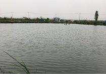 姜太公休闲钓鱼场
