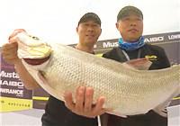 《路亚钓鱼视频》 LUREPRO黄金联赛鲈钓排位赛——太原汾河二库