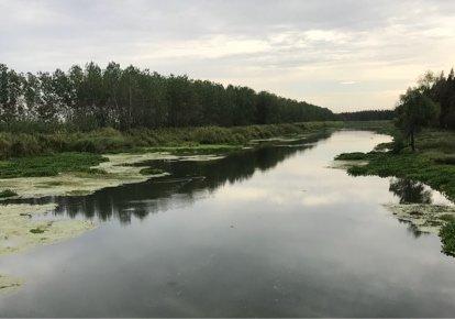 沉湖运输河