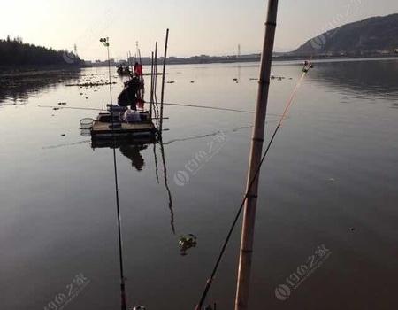 釣魚點滴  開啟大板鯽行程 自制餌料釣鰱鳙魚