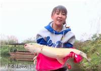 《江湖行》20171115 寻草湘西北