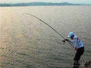 为什么有人更爱用海竿钓法