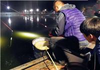 《陪着地瓜去钓鱼》20171005 北京平谷腾飞菜鸟小强钓鲫鱼(上)