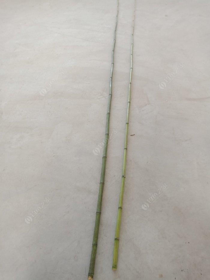 求竹子手工制作鱼竿方法