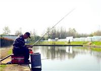 《听李说渔》 第一季18集 复杂变化的鱼情需要稳中求变