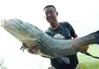 《听李说渔》 第一季08集 给鱼拍照也是一门技术活儿