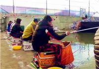 《陪着地瓜去钓鱼》20171126 北京通县漕运鲫鱼(二)