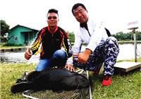 《钓技百事通》2016第27期 虎门黑坑钓龙趸 地瓜实战作钓(下)