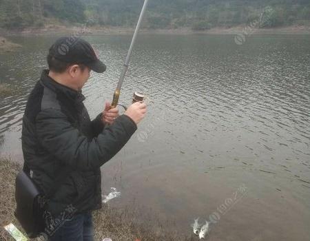 大战长寿湖 钓鱼之家饵料钓翘嘴