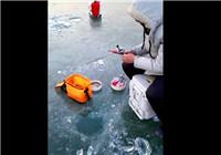 《小松路亞》20171211 冬日冰釣小公魚