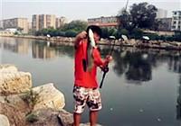 《小松路亞》20171211 路亞鯰魚
