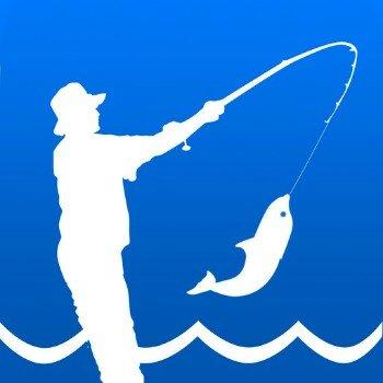 鱼吐泡泡123456