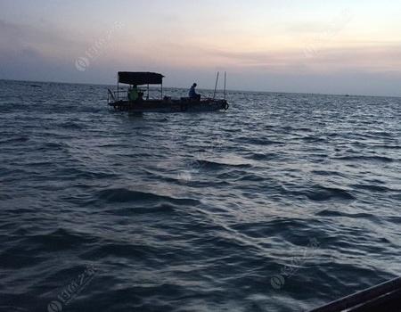 昨天的海釣,打龜快樂