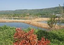 璞晶生态园
