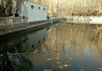 五道林鱼塘