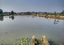 西龙鱼塘钓场