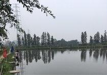 震汇农庄钓鱼场
