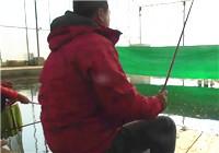 《陪着地瓜去钓鱼》20171118 天津东丽一号棚鲫鱼(下)