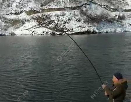 冰天雪地,?#21152;?#22823;青 蚯蚓饵料钓青鱼