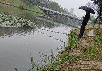 护城河天气预报