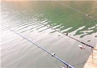 分享筏釣翹嘴魚的釣具和餌料搭配技巧