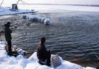 冬季传统钓技巧详细解析