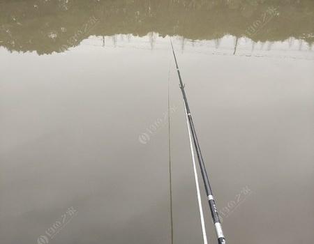 随塘河之行。。。。。 自制饵料钓鲫鱼