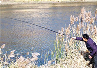 冬季钓鱼打窝思路详细解析