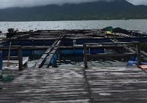 小桂海钓鱼排