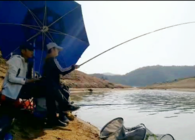 行侣天涯游钓中国的视频合集