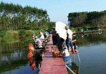 合山江村钓鱼场