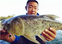 《游钓中国》第二季35集 大毛武宁第二场及时应变中鱼
