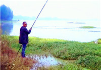 《三本先生》第75期 传统钓法--七星漂线组讲解